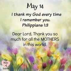 May 14 ~~J~ Philippians Prayer Scriptures, Bible Verses, Christian Affirmations, Daily Scripture, Sisters In Christ, Gods Timing, Fear Of The Lord, Women Of Faith, Faith In Love