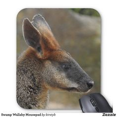 Swamp Wallaby Mousepad