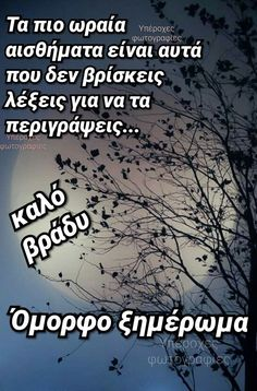 Morning Quotes, Good Night, Beautiful Pictures, Sayings, Nighty Night, Lyrics, Pretty Pictures, Good Night Wishes, Quotations