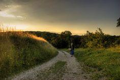 Road to Haluzice - Haluzice, Slovakia Galleries, Country Roads, Community, Gray, Photography, Photograph, Grey, Fotografie, Photoshoot