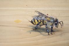 "Bee#6 - Pyrography and natural pigments on poplar (indigo, pollen, zinc) ~13"" x 9"""