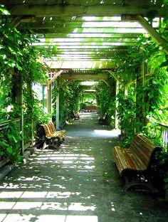 ღღ Passageway Montreal's Botanical Garden (by ash2276, via Flickr)