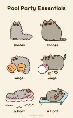 Pusheen and Stormy's guide to pool parties.