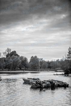 This black and white photo captures the beauty of Central Park in New York. The joy of walking (or paddling) through this beautific habitat is unmatched anywhere in the world. You could take a boat and paddle all the way around the park, and meet some pretty interesting birds and fish along the way!
