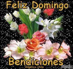 domingo Evening Greetings, Good Morning Greetings, Feliz Domingo Gif, Good Day Wishes, Angel Wallpaper, Happy Week, Logo Gallery, Beautiful Day, Blessed