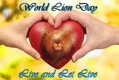Image result for world lion day