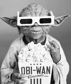 Yoda funny he is!!