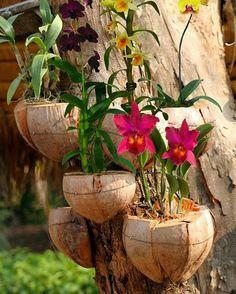 Prá você!  Per te!  For you!  #flores#flowers#natureza#nature#pravoce#foryou#perte#amomuitotudoisso#dojeitoqueeugosto# nellacasadiro  Idéia charmosa via @sonildasacardo