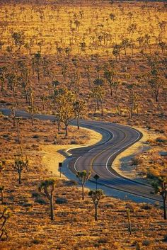Mojave, California (I use to live in the town of Mojave).