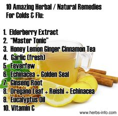 top 10 herbal remedies for colds / flu