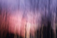 Creative Reasons to use Intentional Camera Movement #photography http://digital-photography-school.com/creative-reasons-to-use-intentional-camera-movement/