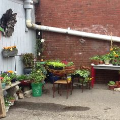 Turning a parking space into a urban oasis