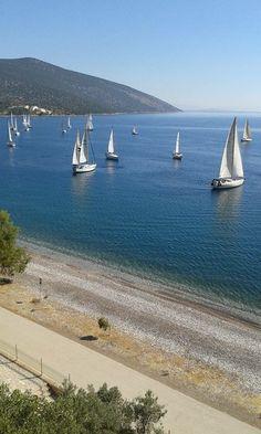 Λίμνη Τριχωνίδα-Greece (ΚΤ)