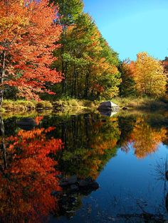 Autumn ♥ Ѽ ♥ ༻✿ڿڰۣ ♥ NYrockphotogirl ♥༻Long Island Lake Reflections Beautiful World, Beautiful Places, Beach Houses For Rent, City Folk, Long Island Ny, Autumn Scenery, Island Girl, Great View, The Great Outdoors