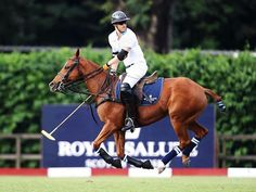 Yesterday we were in the presence of royalty. And what an experience it was to also get the royal treatment from whisky legends @royalsalute who not only hosted us at the Singapore Polo Club in VIP style but also for a staycation and private dinner with HRH Prince Harry at the St Regis. Picture here the prince just about to strike the winning ball that bagged team @sentebale victory at the Sentebale Royal Salute Polo Cup 2017.  Lifestyle Editor @danaonduty  via HARPER'S BAZAAR SINGAPORE…