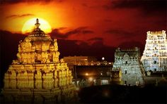Thirupathi Devasthanam- One of the richest Hindu temples in the world. The whole main dome is covered in gold! The idol is a life size statue of Lord Balaji who has a crown and and hand studded with hundrends of diamonds and other precious stones. Another must see in India