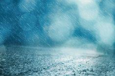 부슬부슬 내리는 비, 태풍은 주의해야겠죠?