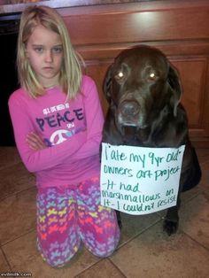 Dog Shaming: 40 Hilarious Pictures Of Dogs In Huge Trouble #puppyshaming #DogObedienceTipsandAdvice #funnydogshaming