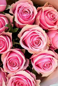 Beautiful Roses. Wedding Card Templates