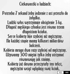 Polish Memes, Weekend Humor, Wtf Funny, Cringe, Some Fun, Sentences, Fun Facts, Haha, Funny Pictures