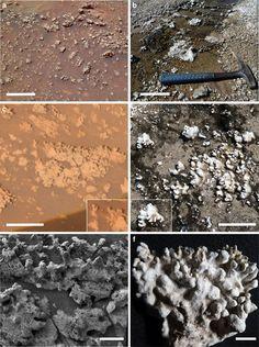 """Hat der NASA-Rover """"Spirit"""" direkte Signaturen einstigen Lebens auf dem Mars gefunden? . . . http://www.grenzwissenschaft-aktuell.de/nasa-rover-direkte-signaturen-einstigen-marslebens20161123"""