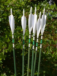 Set of 6 Arrows : Port orford cedar archery : spined out at 30-35# : $65
