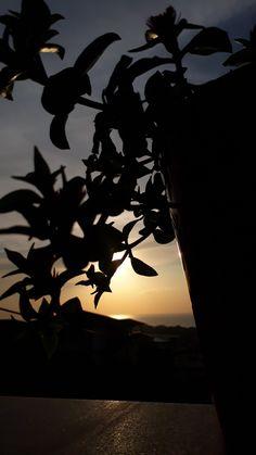 #flower #love #heart #sun #günbatımı Cute Girl Pic, Cute Girls, Cute Baby Animals, Cute Babies, Sky, Landscape, Night, Wallpaper, Places