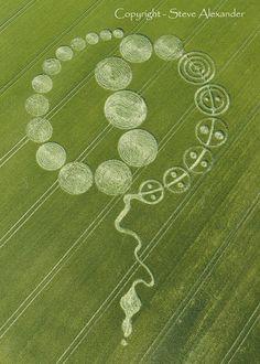 crop circle - Recherche Google