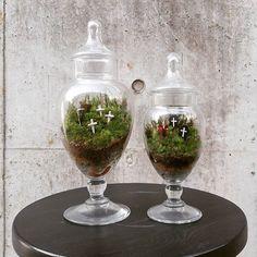 【marolien2】さんのInstagramをピンしています。 《昨日は映画ドラえもんのび太と緑の巨人伝を観ながら1日中コケをいじるというストイックdayでした。🍀🍀 去年の9月に作ったハロウィン苔テラリウムがボーボーだったので整理しました😄🌱🌱瓶との相性が良くて結構気に入ってます✴ #plants#green#platycerium#moss#mossgarden#lovegreen#indoorgarden#indoorplants#mossterrarium#terrarium#苔#苔テラリウム#コケテラリウム#テラリウム#植物のある暮らし#観葉植物#interior#インテリア#preiser #ジオラマ#プライザー#死神#ドラキュラ#ホラー#牧テラリウム》