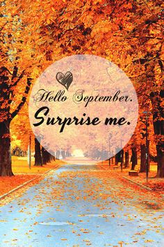 Everything is new in September.  This is when I am at my best and life is the most colourful.