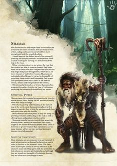 Homebrew Shaman Class 5e by Redditor Pattycakeee