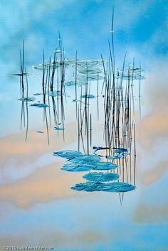Zen by Kathleen Brennan