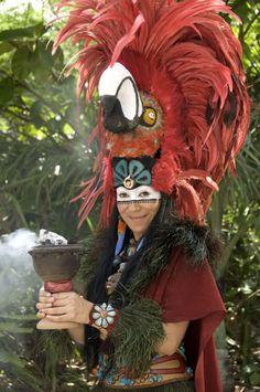 ¿Sabías que para los Mayas la guacamaya era un ave solar?  Su nombre era Mo y representaba el fuego del sol.