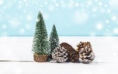 Download wallpapers New Year, winter, 2018, Christmas tree, cones, snow