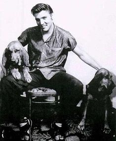 1956 candi Elvis stting with two large bloodhound dogs Lisa Marie Presley, Elvis And Priscilla, Priscilla Presley, Saint Hubert Chien, Rock And Roll, Mississippi, Bloodhound Dogs, Beagles, Tennessee