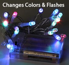 Color Changing Battery Mini Light - Clear Wire 20 LED FOR SNAIL SHELL