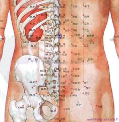 Qi Gong, Acupuncture Points Chart, Shiatsu, Traditional Chinese Medicine, Pressure Points, Alternative Medicine, Reiki, Yoga, Medicine