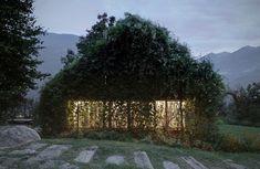 Une maison se faisant dévorer par la verdure au fil du temps  Green Box | iGNANT.de
