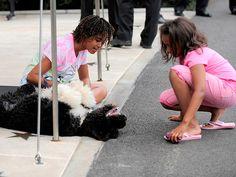 <b>bo</b> <b>obama</b> has much wisdom to bestow upon his new little sister <b>sunny</b>