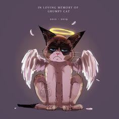 Grumpy Cat Quotes, Funny Grumpy Cat Memes, Cats, Anime, Poster, Gatos, Cartoon Movies, Anime Music, Cat