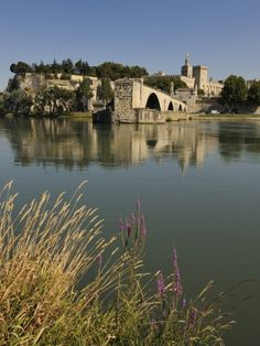 Pont Saint-Benezet, Avignon, France...used to sing to a friend under this bridge to here the echo