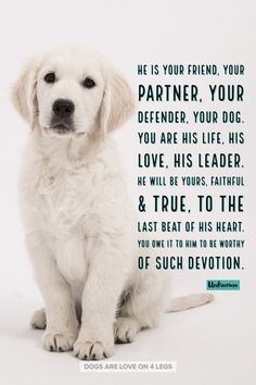 He Is Your Friend, Your Partner, Your Defender, Your Dog...... Dog, Dog Quotes, Inspirational Quotes, Funny Quotes, Life Quotes #dogsfunnyquotes #dogquotes