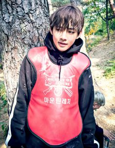 BTS V Kim Taehyung