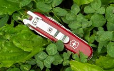 StatGear SwissQlip - As common as Swiss Army Knives (or SAKs) may be in the pockets of hundreds of EDCers, there's always been a key f Cool Knives, Knives And Tools, Edc Everyday Carry, Victorinox Swiss Army, Bug Out Bag, Project 4, Edc Gear, Kydex, Swiss Army Knife