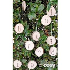 Hang letters from trees, bushes and fences or make a hanging alphabet line with these natural wood letter discs. 9cm diameter, thickness 2cm. Set of 26. Pre-drilled. Designs may vary due to handcrafted nature. String not included. Rec 3+ Yrs