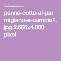 panna-cotta-al-parmigiano-e-cumino1.jpg 2.666×4.000 pixel