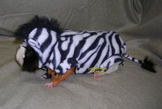 Zebra piggie