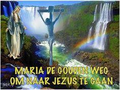 JEZUS en MARIA Groep.: MARIA DE GOUDEN WEG NAAR JEZUS