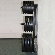 Wall Mount Olympic Weights Tree Plate Storage Diy Workout Rooms