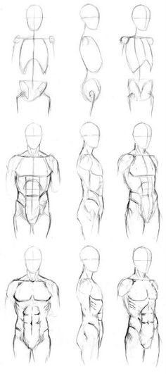 Sketching Of Human Body Step By Step - Basic male torso tutorial by timflanagan male drawing refrences drawing tips drawings body drawing How to draw a person whole body torso Human body. Human Figure Drawing, Figure Drawing Reference, Anatomy Reference, Human Anatomy Drawing, Human Body Drawing, How To Draw Anatomy, Human Sketch, Drawing Male Bodies, Drawing Body Poses